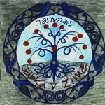 Jabka v Zimě